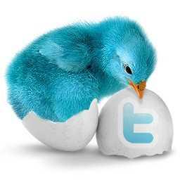 Twitter 青い鳥の名前は アイコンの由来なども判明 Twitter使い方徹底ガイド