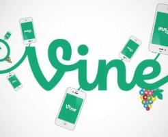 VineImgBlog-01