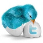 Twitter 青い鳥の名前は!?アイコンの由来なども判明!